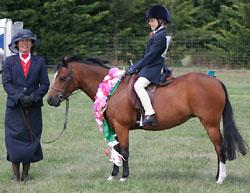 Dragonwyck Skylark. Rider Natasha Waddell
